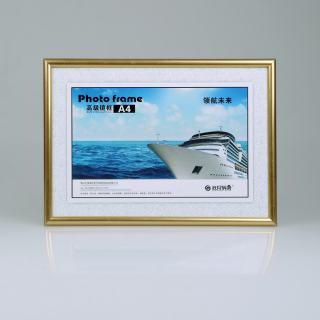 赛兄纳弟 镜框制度框营业执照框 XD-BBA4 金色 210*297mm
