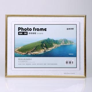 赛兄纳弟 镜框制度框营业执照框 XD-BB5K 金色 435*335mm